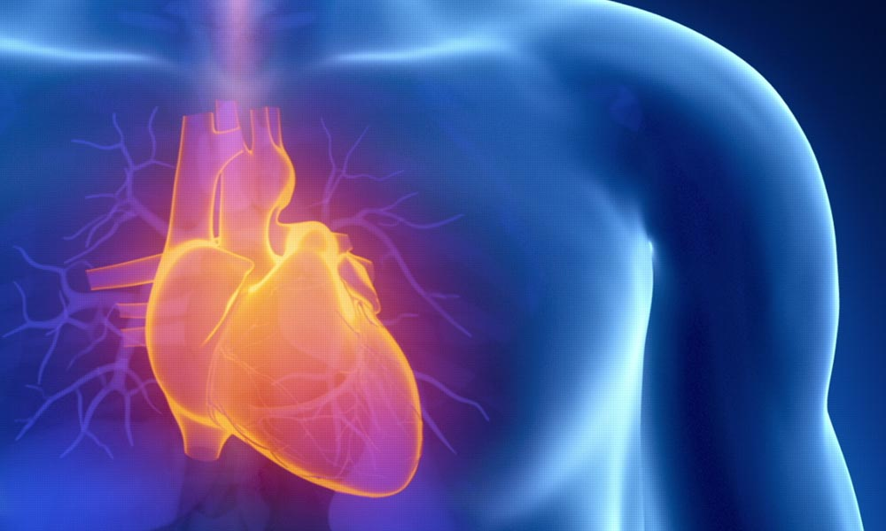 Medical Imaging for Heart Disease |blog article by Catalina Imaging